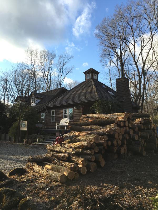 年末年始の休みの間でチェーンソーで玉切りにし、2月一杯かけて手斧で割って薪にしていく予定