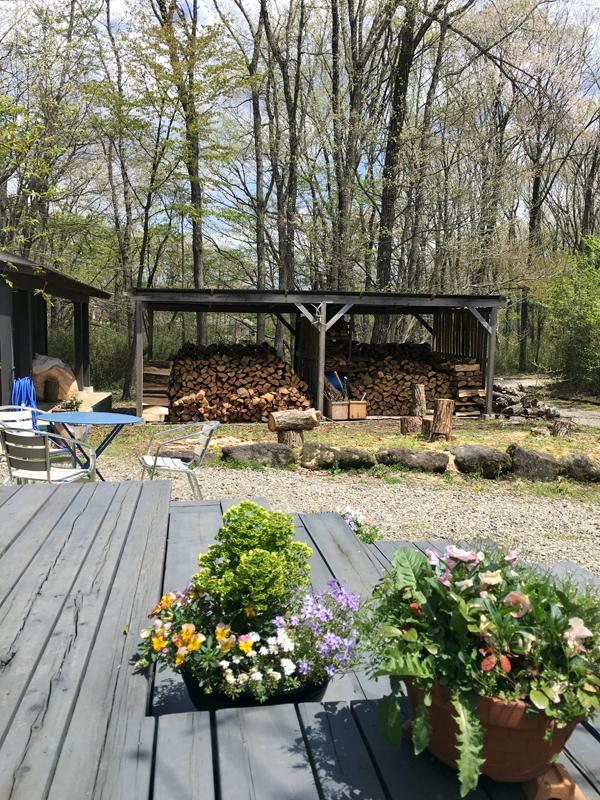 公約通りヘビが冬眠から覚める前に薪の積み込みが終わった我が家の薪小屋。ここ那須では今週から萌え萌え~と、新緑が出始めました