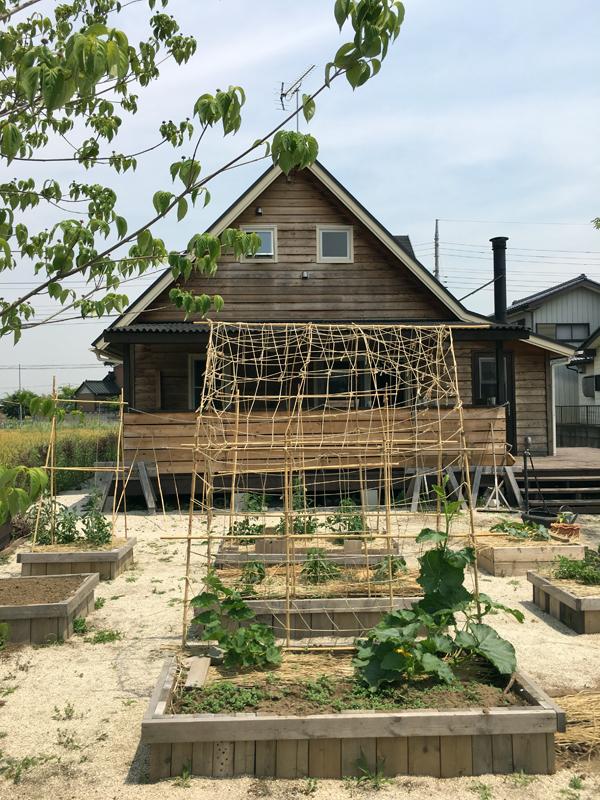 山口さんお宅の菜園です。自然のもの(木と竹と石)だけでボーダーや柵を作った素朴でも絵になる菜園です。 (2016年5月撮影)