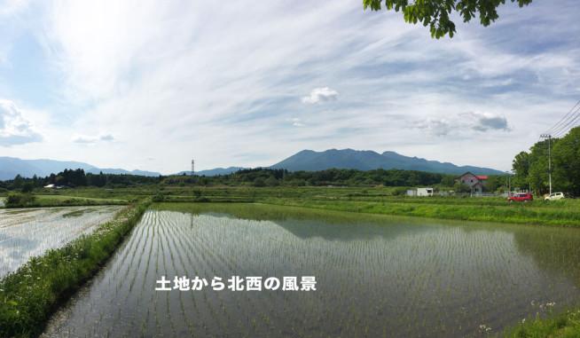 N21040画像3